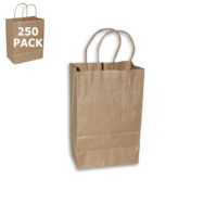 Kraft Gem Size Paper Shopping Bag-Case 250